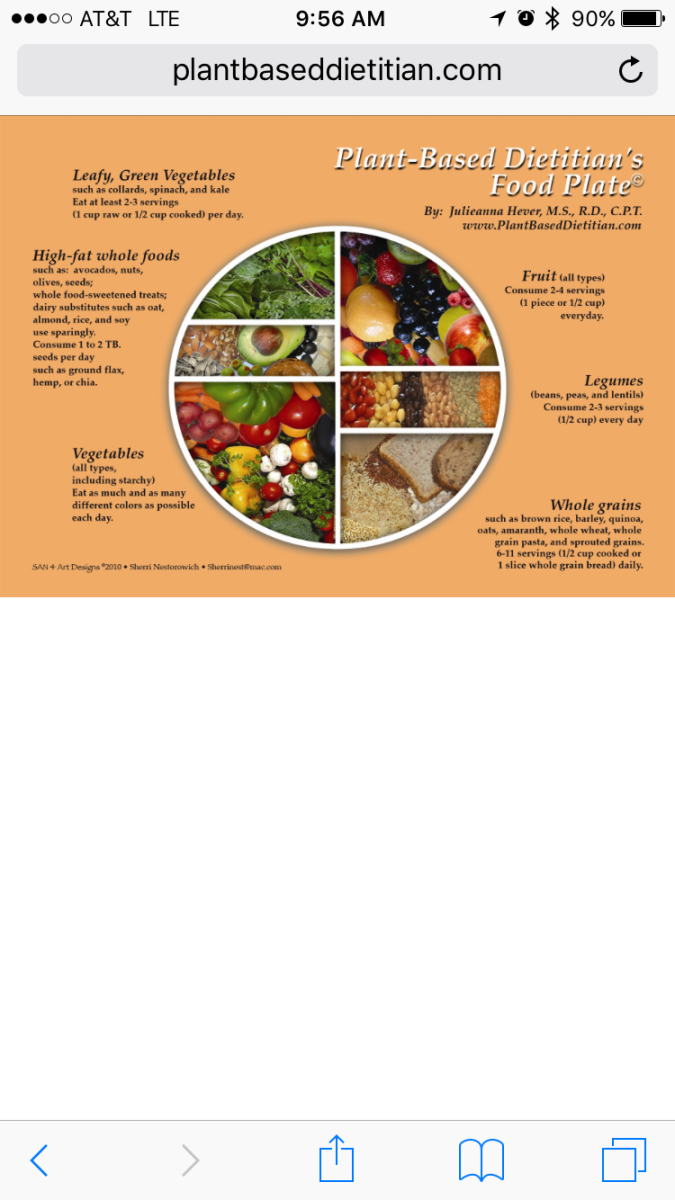 Teen Athlete Nutrition - Topic 1 - Food Categories
